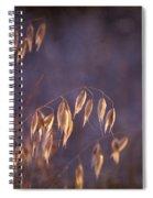 Hot Summer Light Spiral Notebook