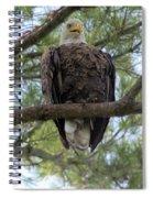 Hot Summer Perch Spiral Notebook