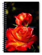 Hot Tamale Spiral Notebook