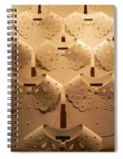Louis Vuitton Window Display Spiral Notebook