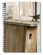 House Wren Feeding Time Spiral Notebook