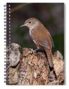 House Wren Spiral Notebook