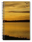 How Many Birds Can You Count? Spiral Notebook