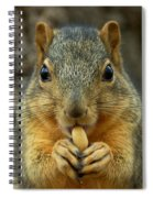 How Many Licks Spiral Notebook