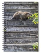 How Much Wood Spiral Notebook