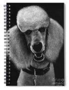 Howard Spiral Notebook