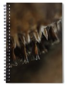 Howl Spiral Notebook