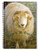 Hows It Going Old English Hunter Green Spiral Notebook