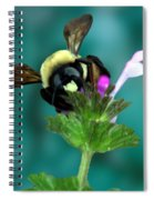 Winging The Wildflowers  Spiral Notebook