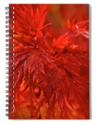 Hubble Galaxy With Red Maple Foliage Spiral Notebook