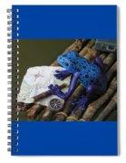 Huckleberry Frog II Spiral Notebook