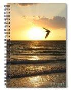 Hug Spiral Notebook