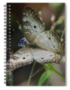 Huge Spiral Notebook