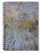 Huge Stump Spiral Notebook