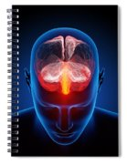 Human Brain Spiral Notebook