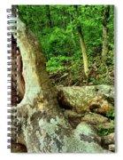 Human Eating Tree Spiral Notebook