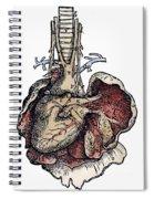 Human Heart, 1543 Spiral Notebook