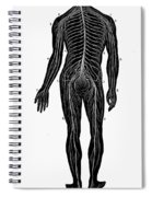Human Nervous System Spiral Notebook
