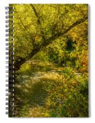 Humber River 5 Spiral Notebook