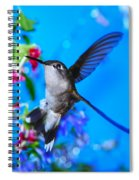Hummer And Flowers On Acrylic Spiral Notebook