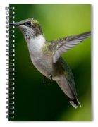 Hummer In Flight Spiral Notebook