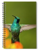 Humming Along Spiral Notebook