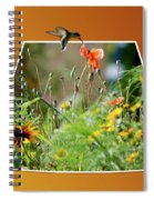 Humming Bird Out Of Bounds Spiral Notebook