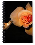Hummingbird And Orange Rose Spiral Notebook