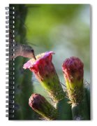 Hummingbird Breakfast Southwest Style  Spiral Notebook