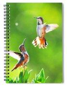 Hummingbird Dance  Spiral Notebook