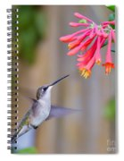 Hummingbird Happiness Spiral Notebook