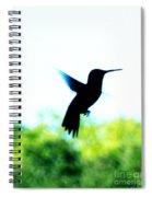 Hummingbird Hover Spiral Notebook