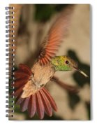 Hummingbird I Spiral Notebook