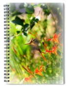 Hummingbird In The Daylilies Spiral Notebook