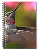 Hummingbird Intensity Spiral Notebook