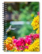 Hummingbird Moment Spiral Notebook