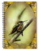 Hummingbird Noveau Spiral Notebook