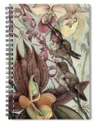 Hummingbirds And Orchids Spiral Notebook