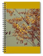 Hummingbirds On Yellow Tree Spiral Notebook