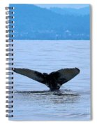 Humpback In Monterey Spiral Notebook