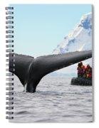 Humpback Whale Fluke  Spiral Notebook