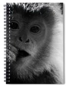 Hungry Spiral Notebook