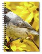 Hungry Bird Spiral Notebook