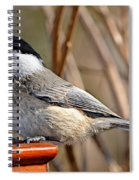 Hungry Chickadee  Spiral Notebook