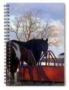 Hungry Horses Spiral Notebook
