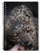 Hungry Leopard Spiral Notebook