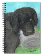 Hungry Newfoundland Dog Canine Animal Pets Art Spiral Notebook