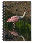 Hungry Pink Spoonbill Spiral Notebook