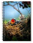 Hungry Tree Swallow Fledgling In Nest Spiral Notebook