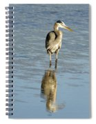Hunting Great Blue Heron Spiral Notebook